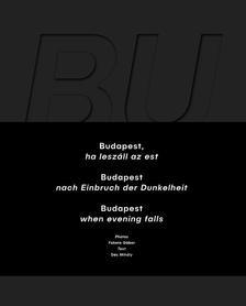 Budapest, ha leszáll az est