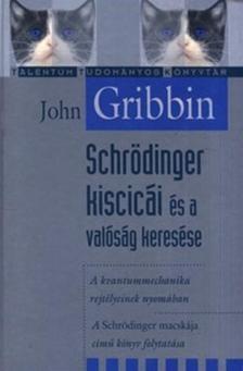 Schrödinger kiscicái és a valóság keresése