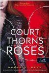 A Court of Thorns and Roses - Tüskék és rózsák udvara