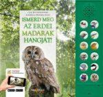 Ismerd meg az erdei madarak hangját