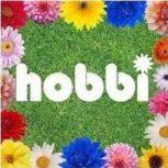 Hobbi, szabadidő